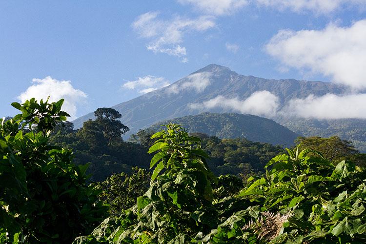 Mount Meru Waterfall Tour